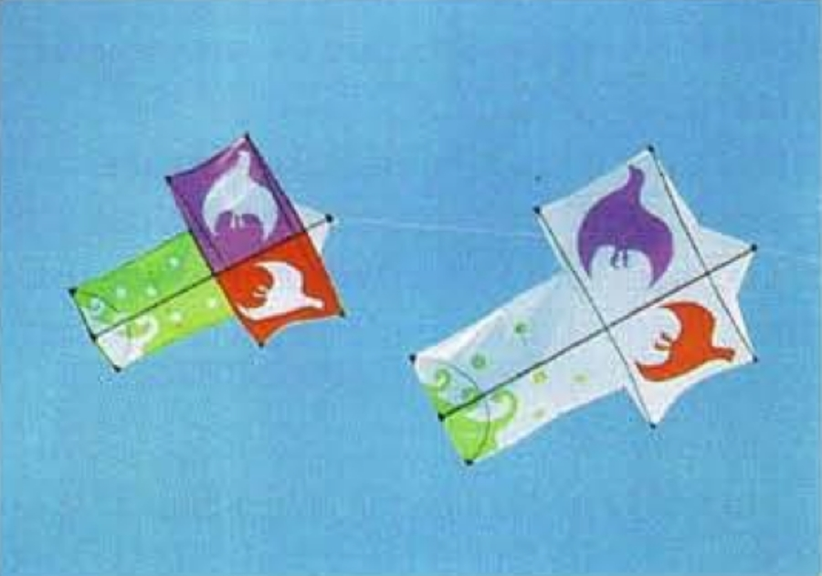 Japanese Bird Kites