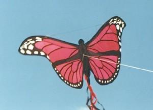 Gail's first kite